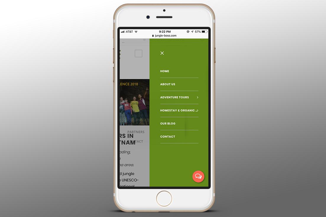 Jungle Boss Website Design