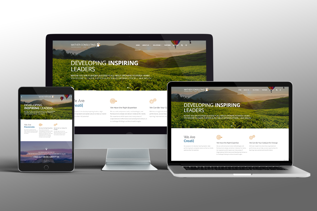 Website Design for Consulting Agency